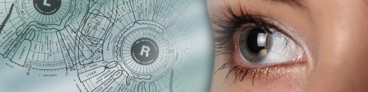 IridologyAn iris analysis can be used to determine the body's unique needs, strengths and weaknesses